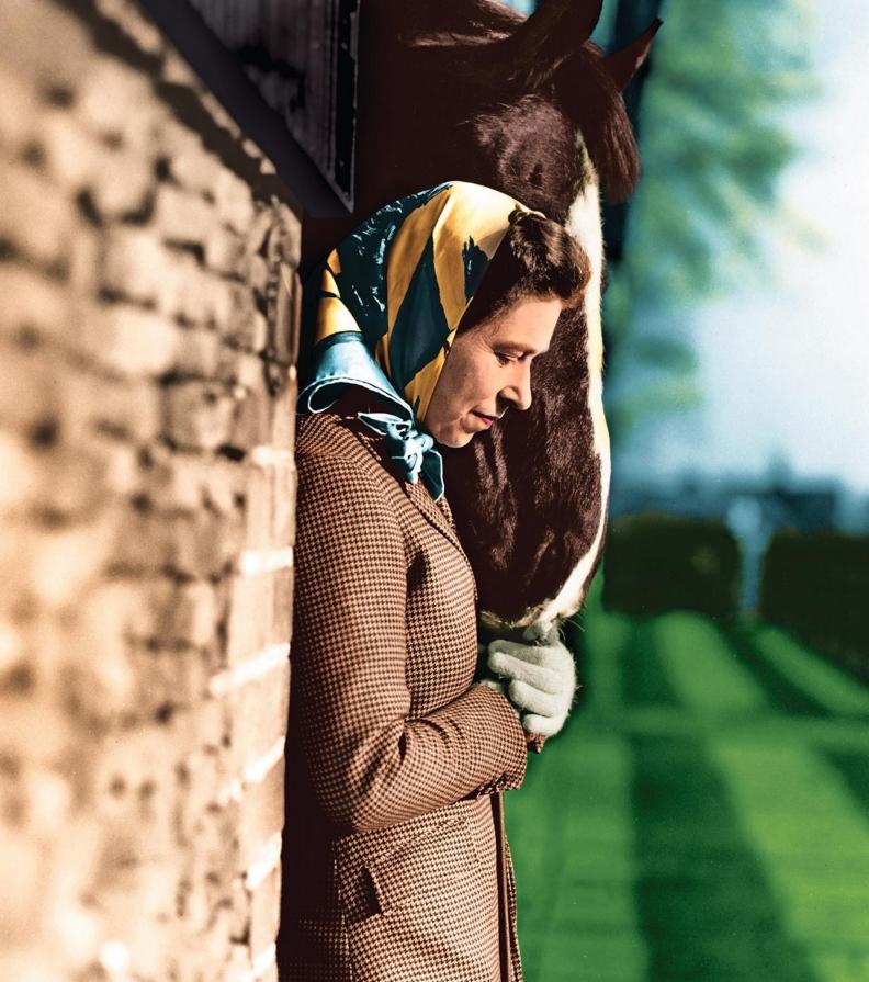 La présence des chevaux a toujours apporté de grands bonheurs à Élisabeth II. La reine du Royaume-Uni est aussi connue pour ses élevages.