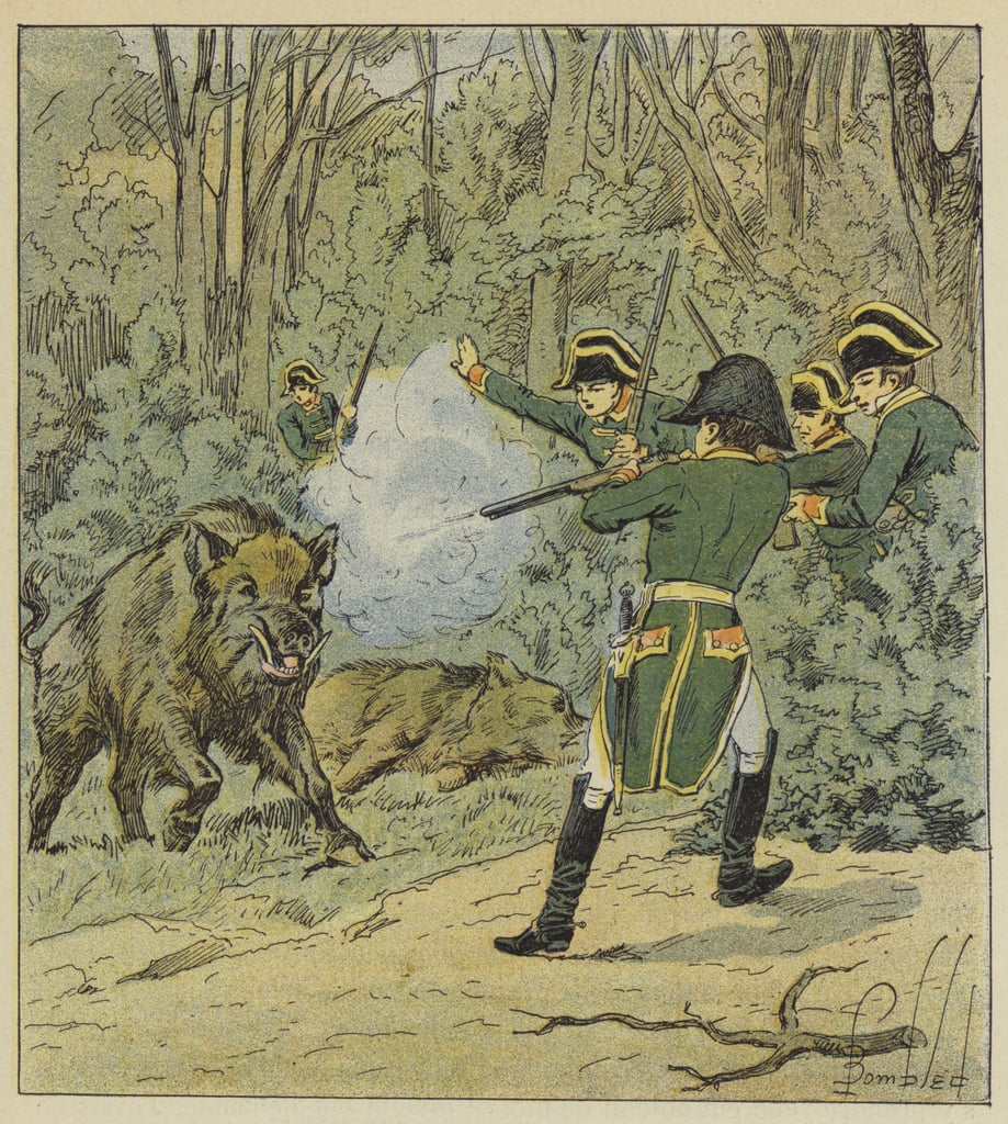https://sf.lechasseurfrancais.com/wp-content/uploads/2021/07/napoleon-foret-marly.jpg